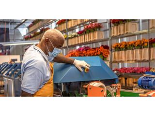 ISO выпустила стандарт по обеспечению безопасности рабочих мест: рекомендуются видеоконференции и измерение температуры