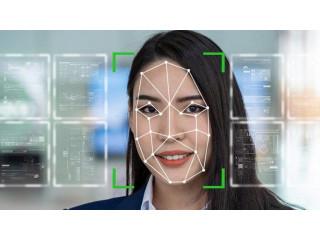 В Канаде использование скандальной технологии распознавания лиц Clearview сочли незаконной