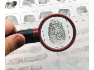 Иностранцев в России обязали сдавать биометрию