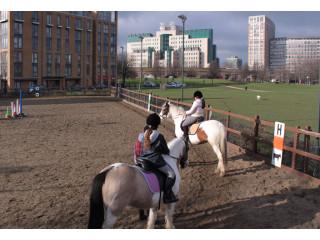 Камеры Dahua установлены на городской ферме для экскурсий в Лондоне